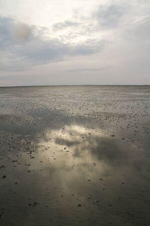 idylle: Wattenmeer, Schleswig-Holstein, Deutschland