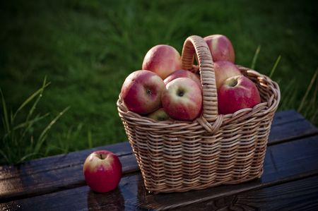 Apples in a basket  photographed out doors on terrace in rain Stock Photo