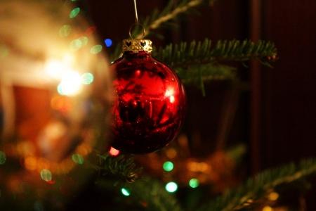 Pine tree branch and red ball  Standard-Bild