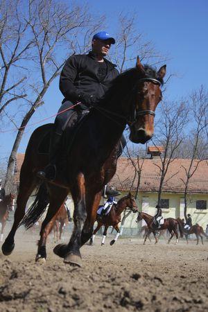 Horseman on the chestnut horse