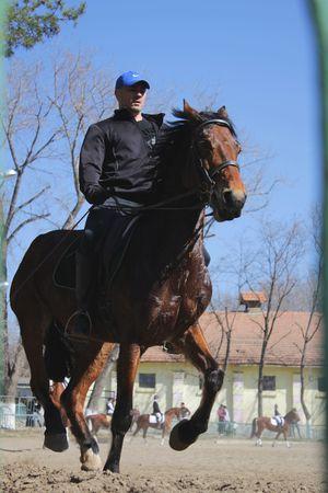 charro: Jinete en el caballo de la casta�a