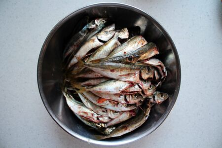 gutted: Gutted Mackerel in the bowl Stock Photo