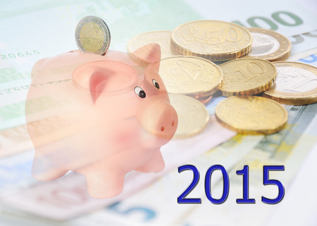 stock market return: piggy bank with 2015 and euro background