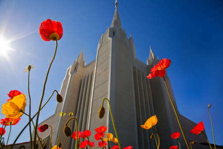 mormon temple: Church of Jesus Christ of Latter-day Saint in San Diego