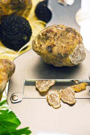 tuber vegetables: Alba Truffles