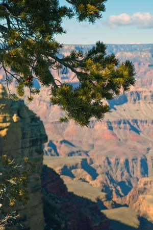 Grand Canyon, National Park Stock Photo