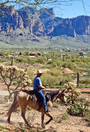 Cowboy in Arizona USA