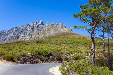 high plateau: Table Mountain Cape Town