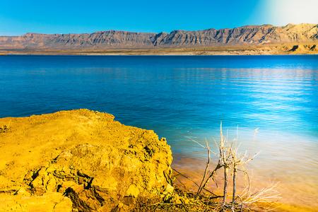 desert ecosystem: Lake Mead National Recreation Area in Arizona