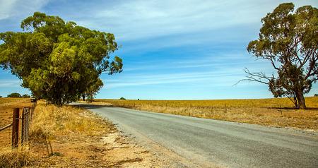Outback at Narrandera New South Wales Australia Standard-Bild - 91751606