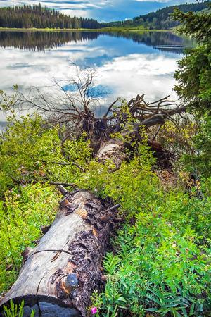 At Lac Le Jeune West at Kamloops British Columbia Canada Standard-Bild - 111066297
