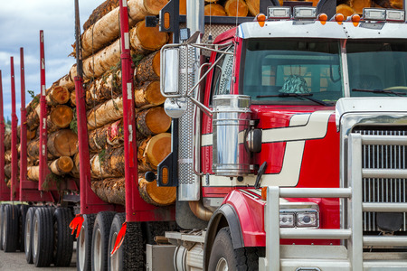 Heavy loaded timber transport truck in British Columbia Canada
