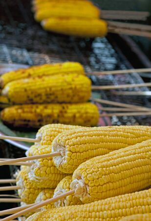 Grilled corn on the cob on charcoal