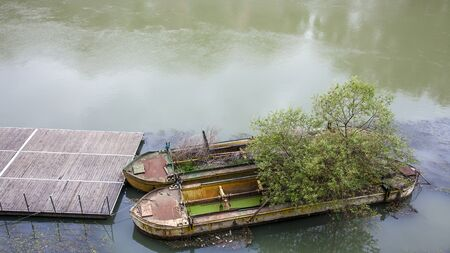 Scrapped barges in Rome on the Tiber Italy on which trees are already growing.