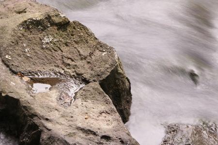 hydrobiology: Long exposure shot of a torrent