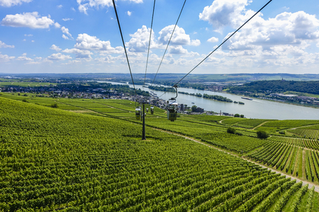 Flying over the vineyard near the river Rhine