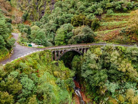 A person standing on a jungle bridge of the Island of Madeira