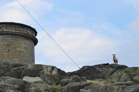 Water tank and aries high on the rocks of the isle of Utsira, Norway. Stock Photo