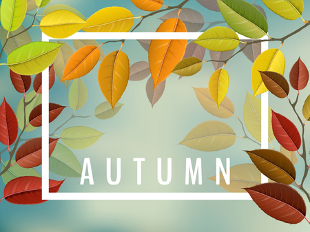 Autumn leaf frame vector illustration for fall season design. Ilustrace