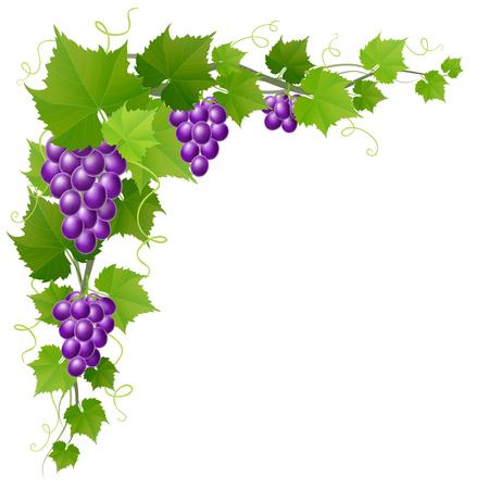 Grape corner decoration