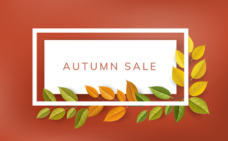 Horizontal banner autumn frame with colorful branches and leaf, vector illustration. Template for autumn sale, school beginning and other fall season design