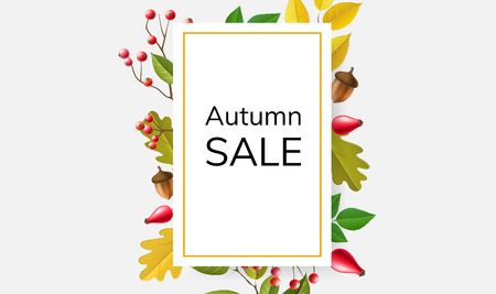 Autumn sale frame with colorful plants, berries, leaf and branch, including rosehip, acorn, and red berry. Vector illustration for fall season, for autumn sale and other nature design Ilustrace