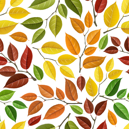 Autumn branch with colorful autumn leaf, seamless pattern, isolated on white. Vector illustration, texture for autumn, fall design and other season background