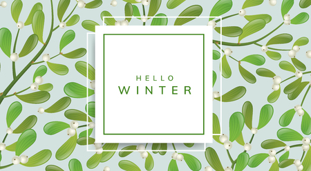 Horizontal banner with square paper frame and mistletoe plant pattern background. Elegant frame with white berry and green leaf for Christmas and other winter holiday and celebration