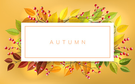 Autumn banner frame with red berry and autumn branches and leaf. Horizontal banner with fall colors for nature design and background Ilustrace