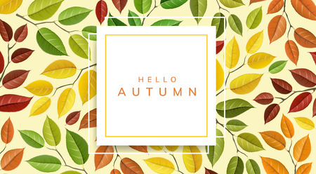 Autumn leaf pattern with geometric frame. Vector illustration with colors of fall, for nature realted design and background, horizontal banner