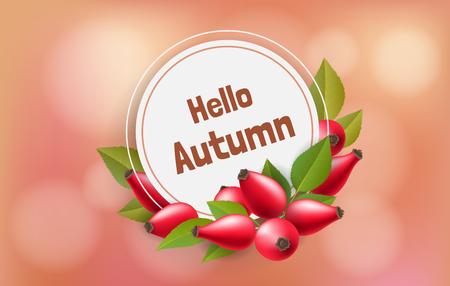 Herbst runder Papierrahmen mit roter Hagebutte und Blatt. Vektorillustration für Herbst- und naturbezogenes Design