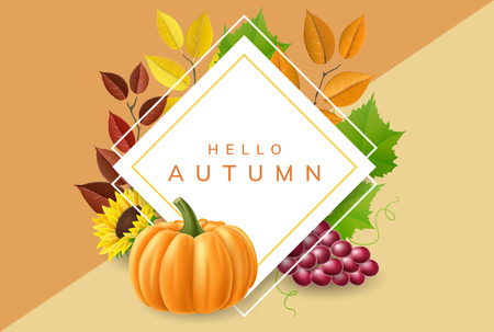 Geometric frame for harvest, with autumn leaf, grape, sunflower and pumpkin. Vector illustration with realistic natural elements, fall colors for harvest and nature related design and banner Ilustrace