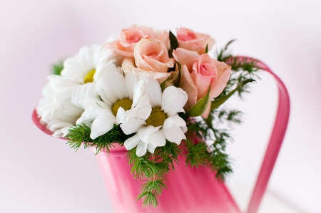 Flowers pink Background