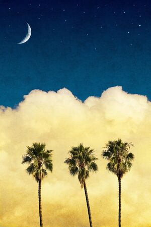 three palm trees: Three palm trees with yellow clouds and a night sky with a crescent moon and stars.  Image has a vintage textured paper background.