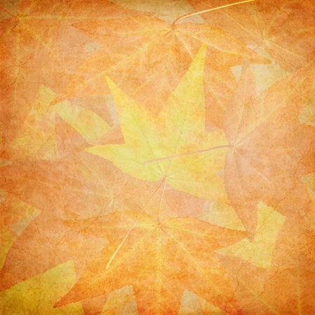 overlapped: Fall leaves with vintage paper textures. Stock Photo