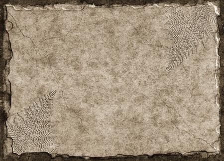 고사리 화석 인쇄물과 제기 돌 태블릿입니다.