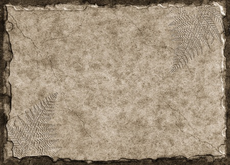 prehistoric: A raised stone tablet with fern fossil imprints.