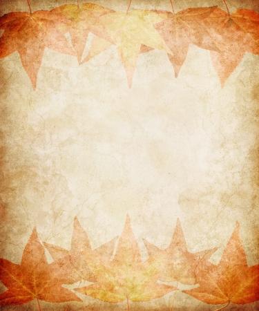 Subtiele herfst bladeren op een vintage, grunge papier achtergrond. Stockfoto