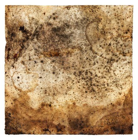 moldy: Old moldy paper with dirty stains and spots.