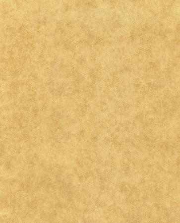 pergamino: Papel viejo con un patr�n moteado de fibra.