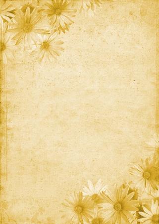 parchemin: Fleurs sur un fond de papier �g� et tachet�. Banque d'images