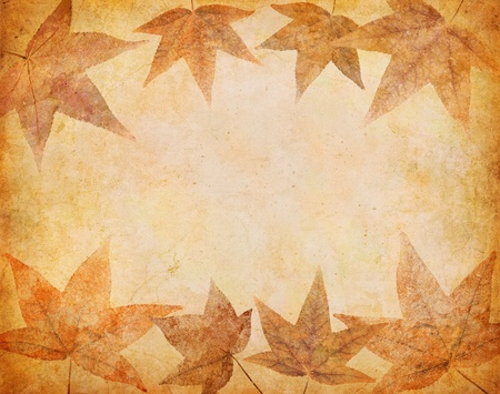 Grungy autumn leaves on a vintage paper background. photo