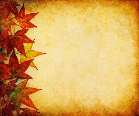 Ein Rand der Blätter im Herbst auf einem Vintage, grunge Papier Hintergrund. Standard-Bild - 10495063
