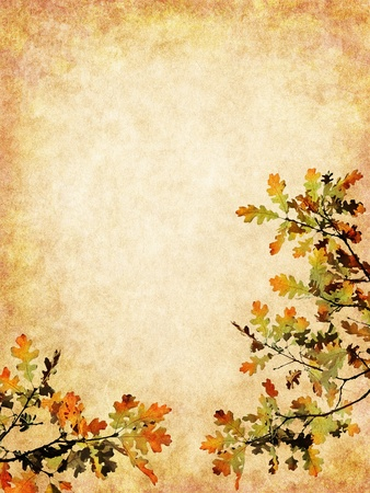 textured paper background: Autumn leaves on a textured paper background.