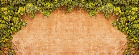 ivy wall: An old stone wall reproduced in a vintage style with a textured effect. Stock Photo