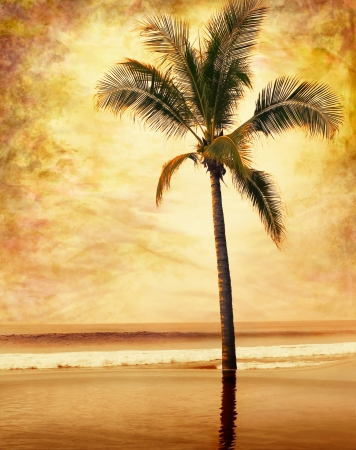 A sepia-toned palm tree done in a painterly grunge and vintage style. photo