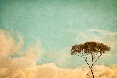 A eucalyptus tree and clouds done in a vintage style.  Image has a pleasing paper texture and grain at 100%. photo