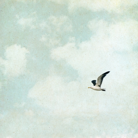 A seagull and clouds on a vintage paper background with grunge textures and grain  Stock Photo