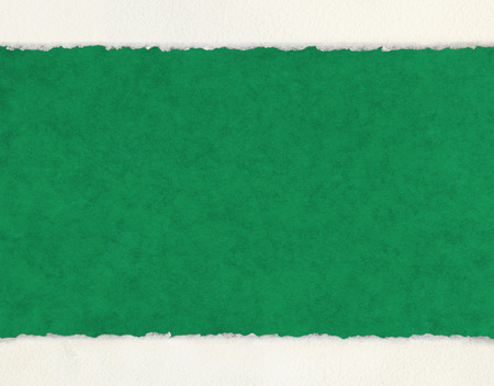 deckled: A textured green paper background with white deckled edge watercolor paper borders. Stock Photo
