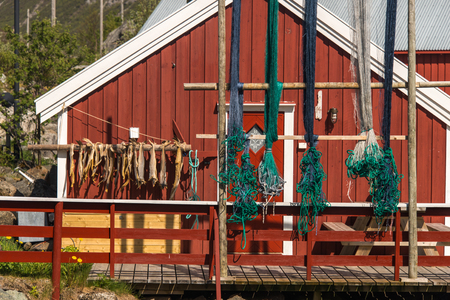 air-dried cod stockfish in Norway Stock Photo